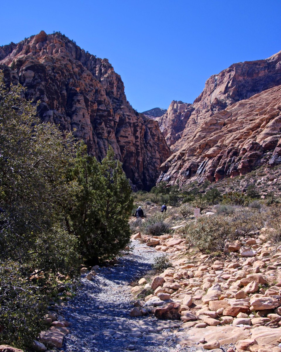 Trail into Ice Box Canyon in Red Rock Canyon near Las Vegas.