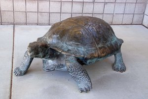 Tortoise sculpture at Red Rock Canyon Visitor Center next to Las Vegas, Nevada.