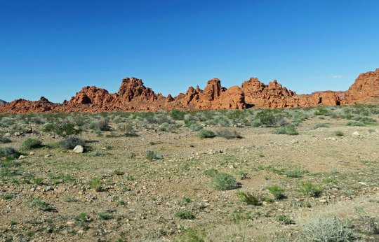 Introductory view of the Valley of Fire State Park near Las Vegas.
