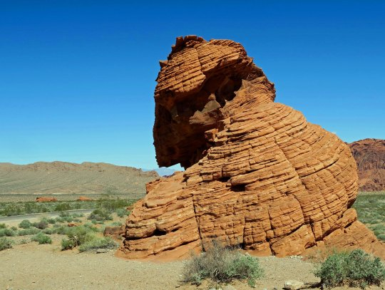 Valley of Fire State Park rock sculpture.