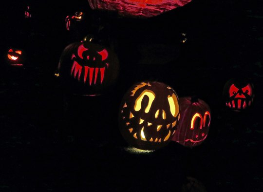 Demon pumpkins ay Jack-o-Lantern Spectacular, Providence, RI