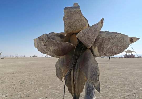 Efflorescence close up, Burning Man 2017
