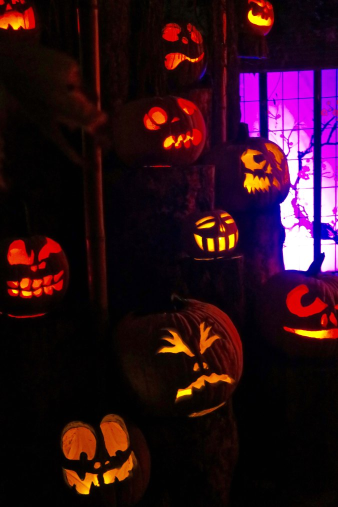 Gaggle of Ghouls at Jack-o-Lantern Spectacular in Rhode Island