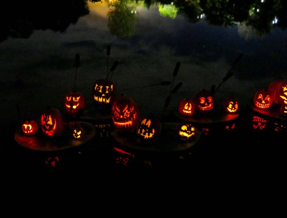 Halloween pumpkin reflections at Jack-o-Lantern Spectacular