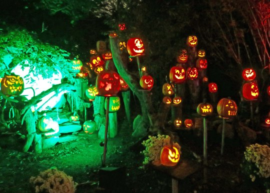 Hobbit home at Jack-o-Lantern Spectacular in Providence Rhode Island