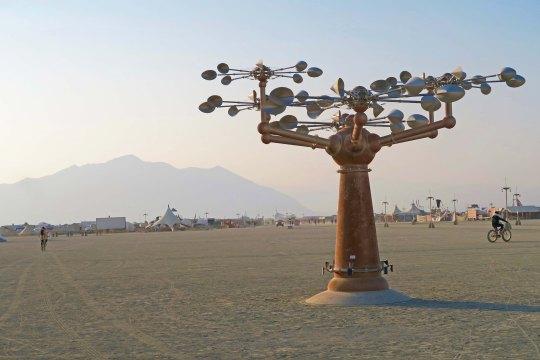 Macchina Naturale at Burning Man 2017