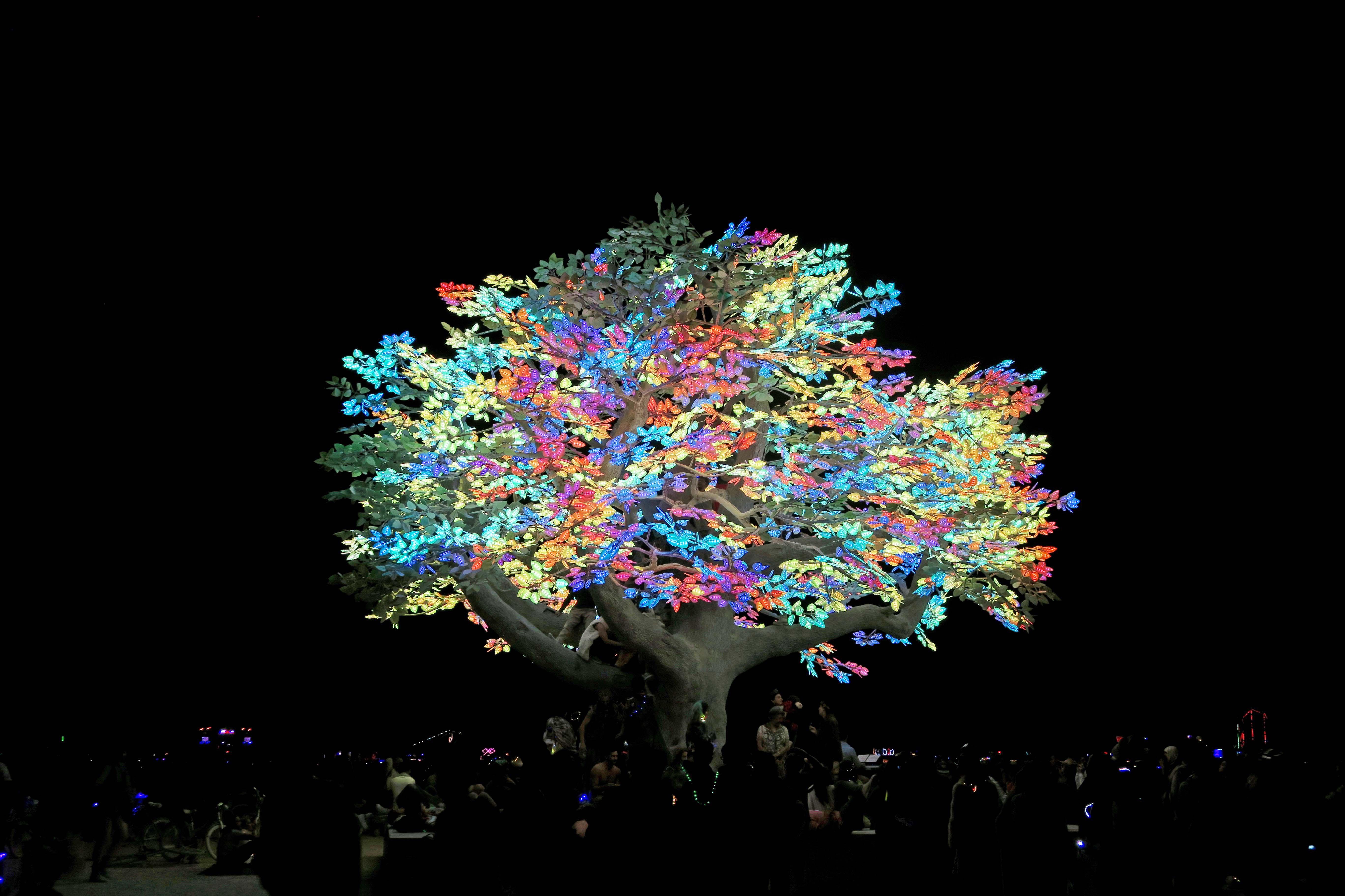 Nighttime view of Tree of Ténéré , Burning Man 2017