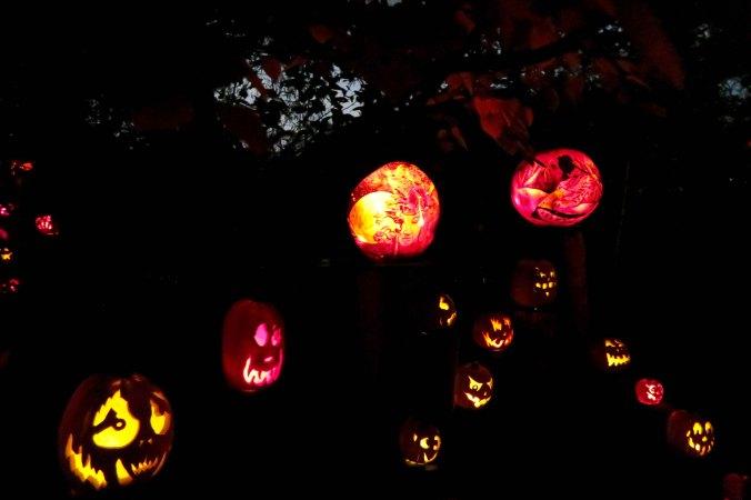 Pumpkin scene at Jack-o-Lantern Spectacular in Providence, RI