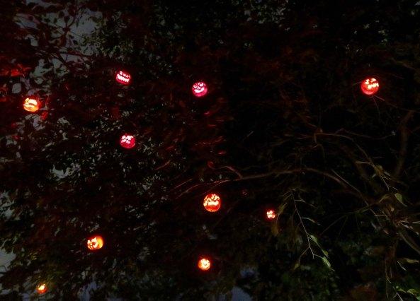 Pumpkins in trees at Jack-o-Lantern Spectacular in Rhode Island
