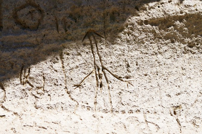 Photograph of human figure petroglyph at Petroglyph Point by Curtis Mekemson.