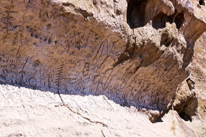 Rock Art of Petroglyph Point P1