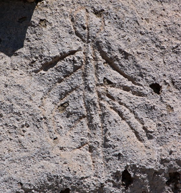 Rock Art of Petroglyph Point