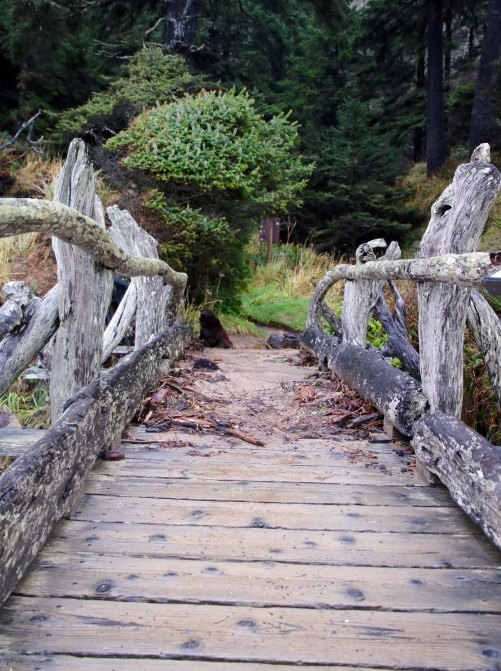 Bridge at Beach 5, Olympic National Park