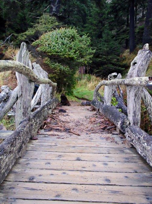 Bridge at Beach 5, Olympic National Park