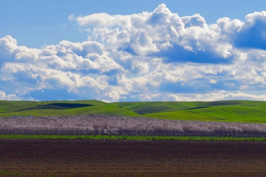 California's Central Valley