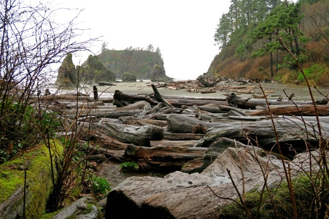 Photo of driftwood and rocks at Ruby Beach by Curtis Mekemson.