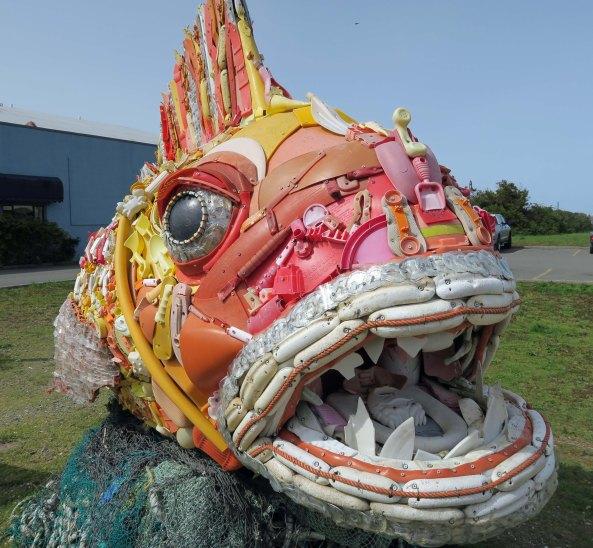 Ocean trash fish at Bandon, Oregon