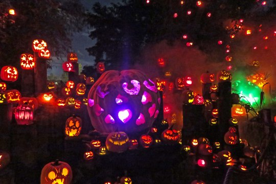 Pumpkin carving festival in Rhode Island