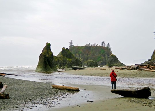 Sea stacks in Olympic National Park