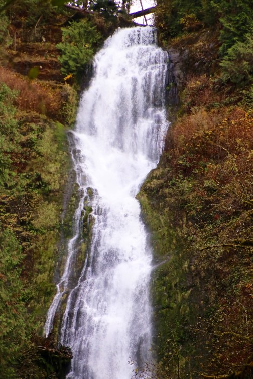 Photo by Peggy Mekemson of Munson Creek Falls near Tillamook, Oregon.