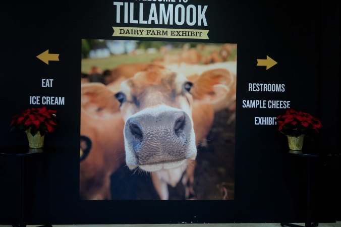 Welcome to Tillamook Cheese Factory