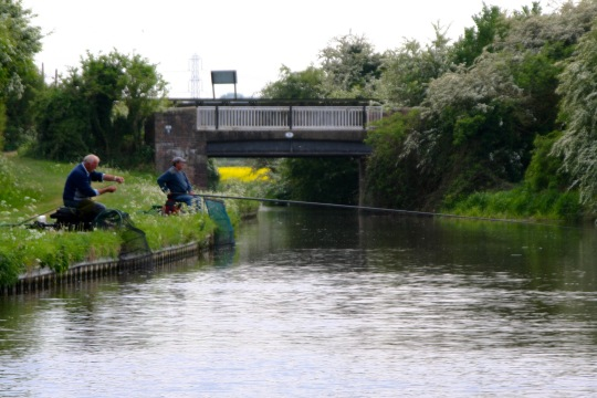 Fishing on Trent and Mercy Canal