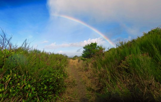 Half a rainbow at Griffith-Pride State Park in Copalis Beach, Washington