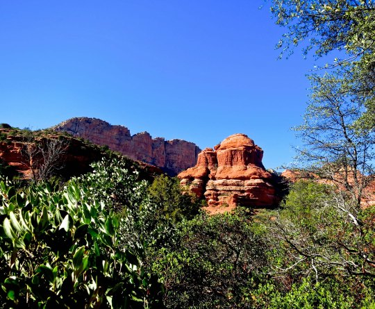 Sandstone rock in Boynton Canyon