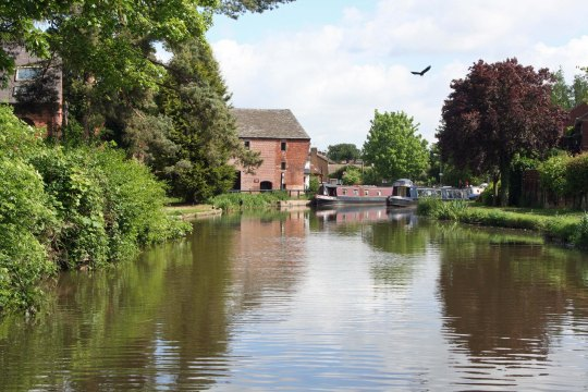 Scenic view along Trent and Mersey Canal