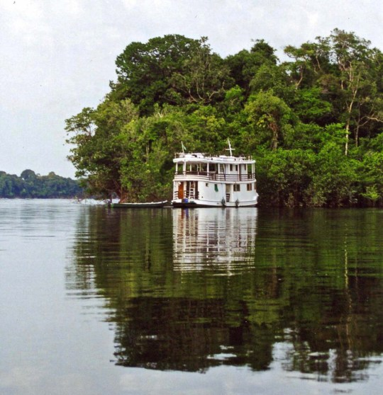 Amazon Clipper on tributary of Amazon River