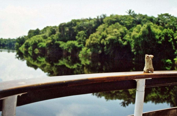 Bone on tributary to Amazon River