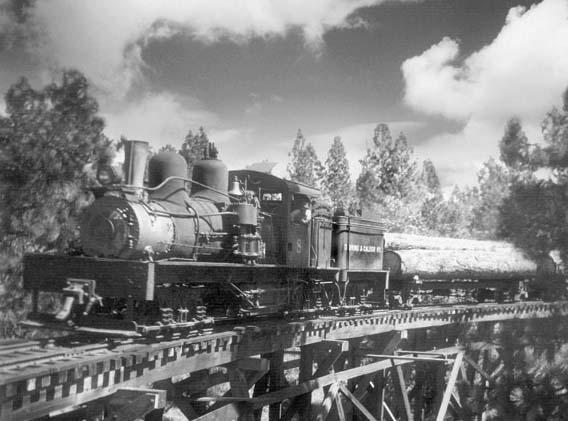 Caldor train