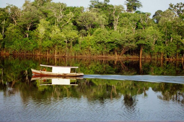 Covered boat on Rio Negro River in Amazon Rainforest