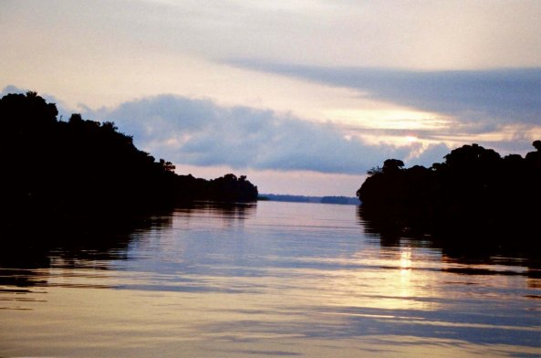 Evening in the Anavihanas on the Rio Negro River