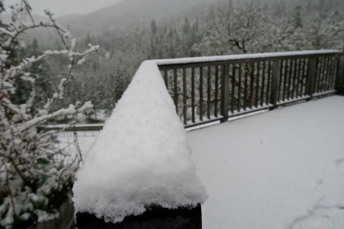 Snow gathering on railing showing perspective