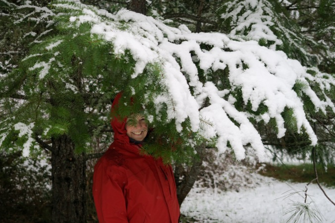 Peggy Mekemson under snow covered Douglas fir limb