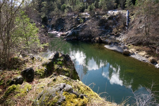Applegate River looking spring-like in February