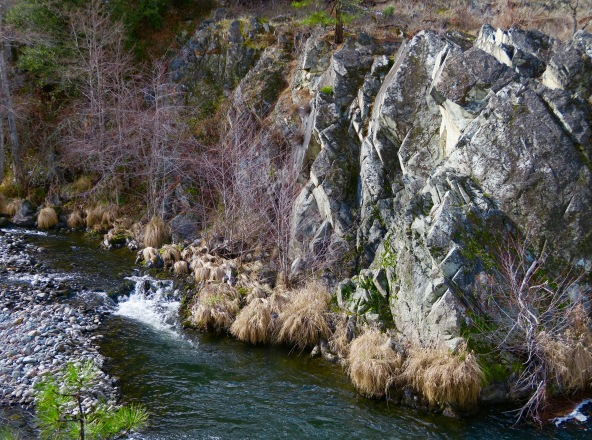 Applegate River in February