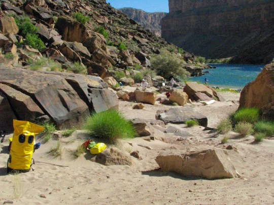 Jackass campsite on Colorado River by Don Green