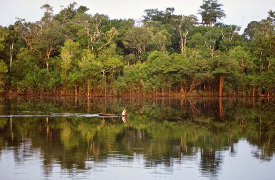 Small boat on Rio Negro River in Brazil