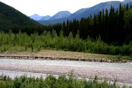 View along Alaska Highway in British Columbia