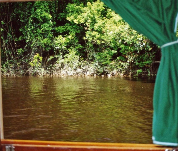 View out window of river boat on the Amazon