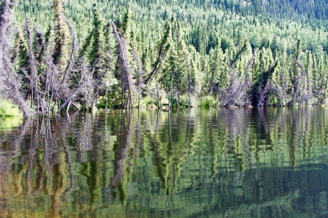 Reflection shot Yukon Territory